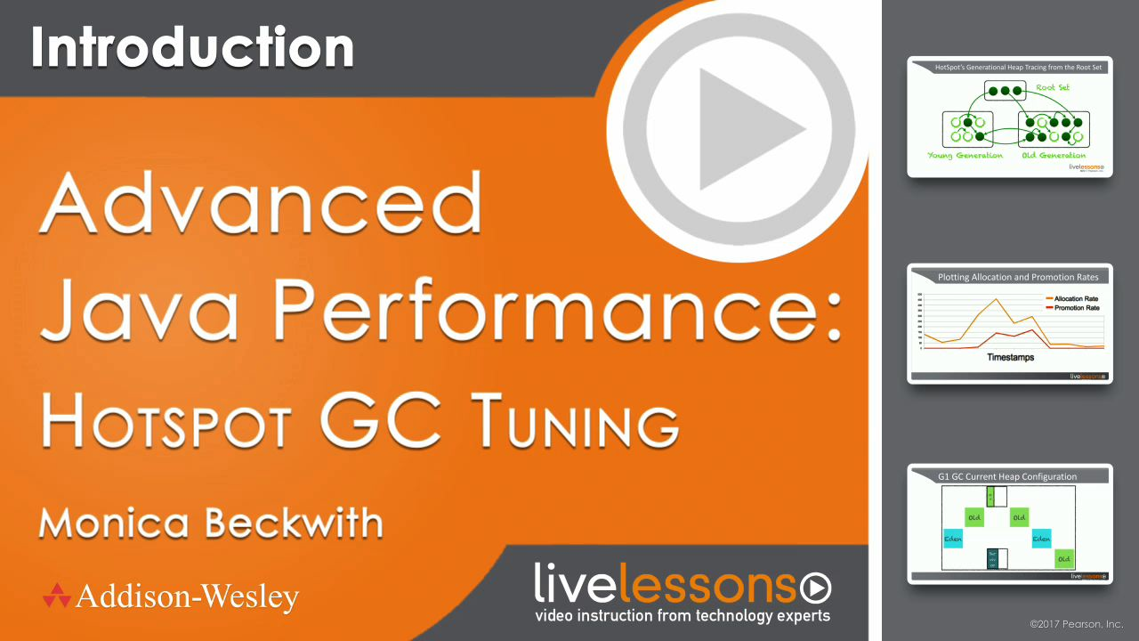 Advanced Java Performance: Hotspot GC Tuning LiveLessons (Video Training)