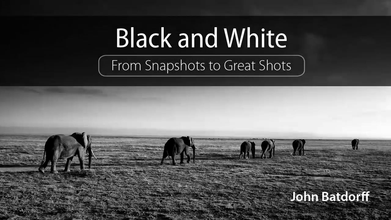 Black and White: From Snapshots to Great Shots (DVD)