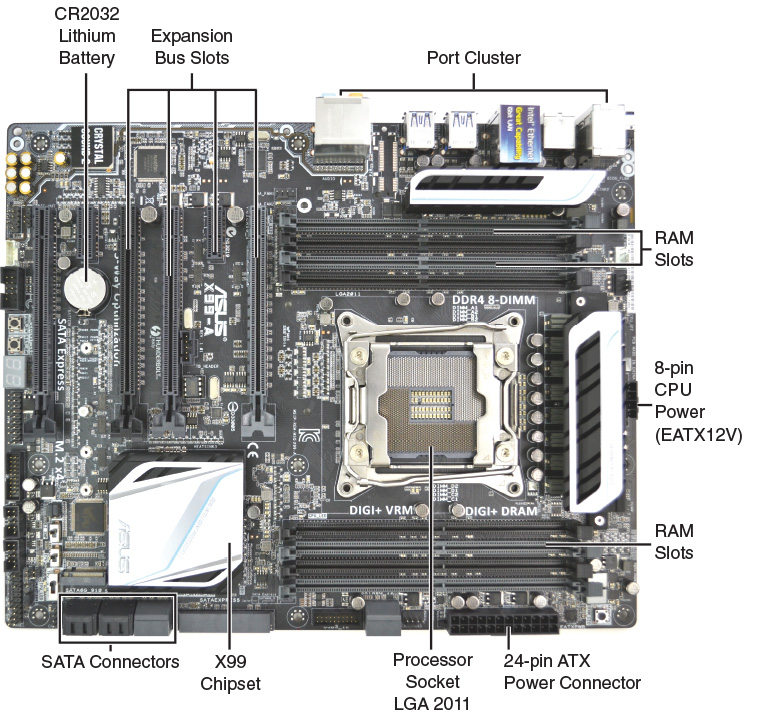 Day 30  Motherboard Components