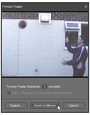 Step 4: Creating a Freeze Frame | Creating an Enchanted