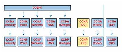 Cisco CCNA Wireless 200-355 Exam Profile     Pearson IT