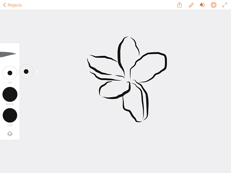 how to draw flower bushes