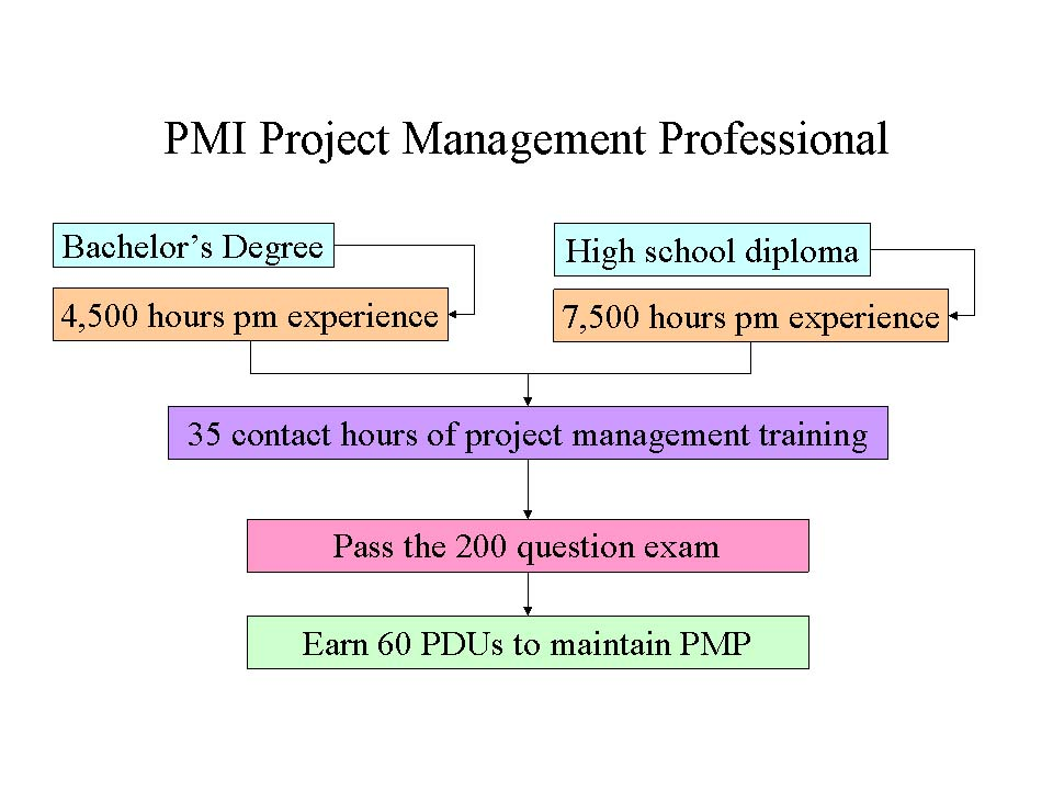Back To Business Professional Certifications Real World Project