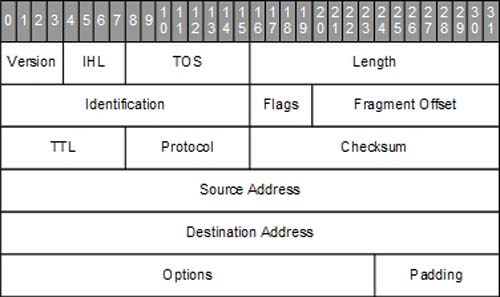 Anatomy of an IPv4 Packet | Anatomy of an IPv4 Packet | Pearson IT ...