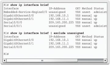 show ip interface brief