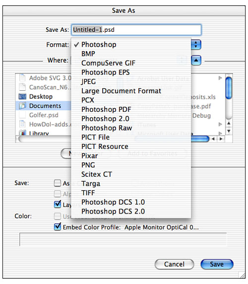 Understanding and Choosing File Formats in Photoshop CS and