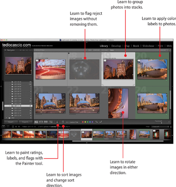 Organizing images in the photoshop lightroom 4 library rotating 03fig00g ccuart Images