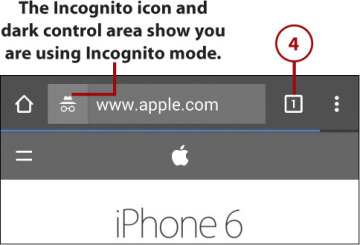 Browsing in Secret with Incognito Tabs | Browsing the Web