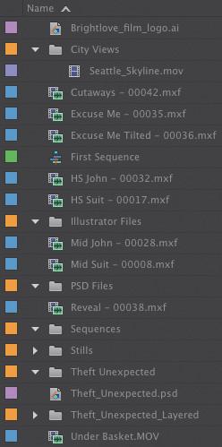 Working with bins > Organizing Media in Adobe Premiere Pro