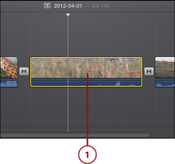 Correcting Blurry or Distorted Video | Editing and