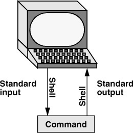 Standard Input and Standard Output | A Practical Guide to Ubuntu Linux: The  Shell | InformIT