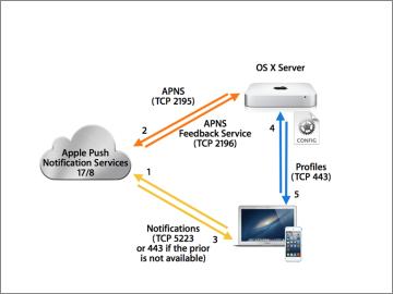 OS X Server Essentials 10 10: Introducing Account Management