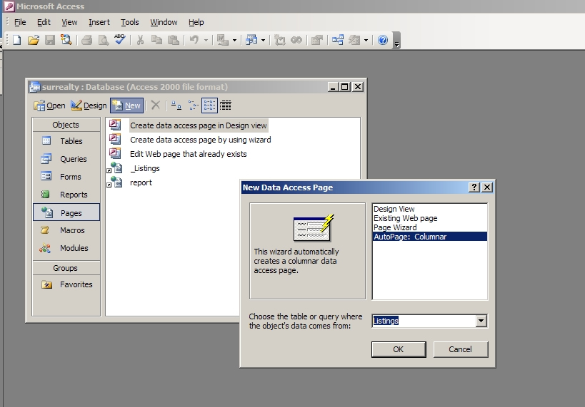 Creating an Online Data Access Page | Microsoft Office Reference