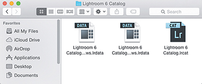 Dealing with Lightroom Disasters (Troubleshooting) | Dealing