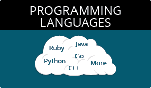 Learn a Programming Language