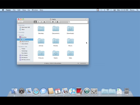Mac OS X 10.6 Snow Leopard: Video QuickStart Guide